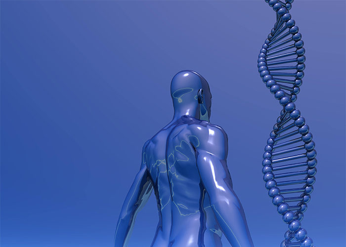 image of human body and a DNA strand