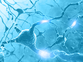 image of neurons with electrical charge