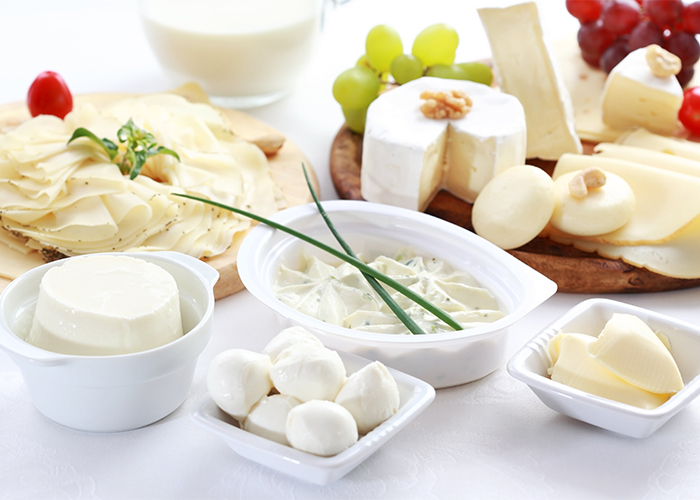 spread of cheese and dairy products