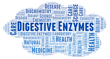 blue word cloud with the largest text being digestive enzymes