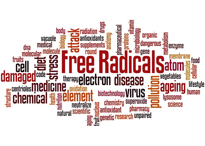 word cloud of free radicals and health