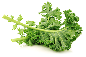 a piece of kale on a white surface