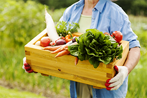 woman carrying a large wooden crate of fresh organic vegetables