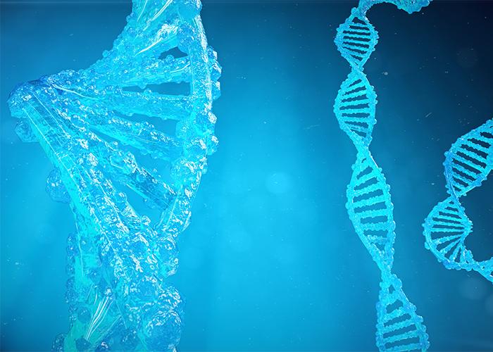 DNA strands that look frozen