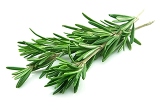 sprigs of rosemary on a white surface