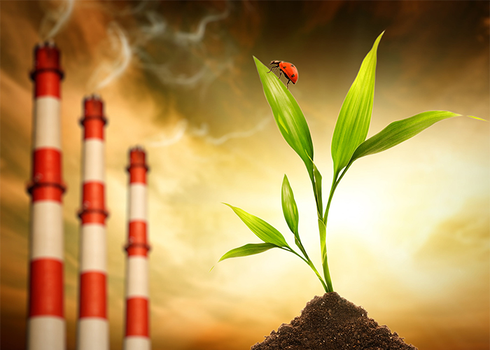 graphic of a green plant, ladybug, and a set of smoke stacks